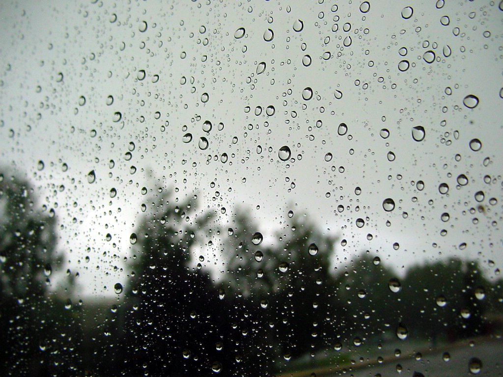 What's the Link Between Rainfall and Back/Joint Pain?