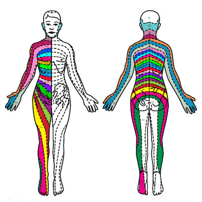 Spinal Conditions back diagram of the different regions of pain areas