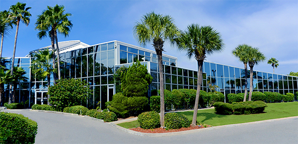 Bonati Spine Institute Tampa